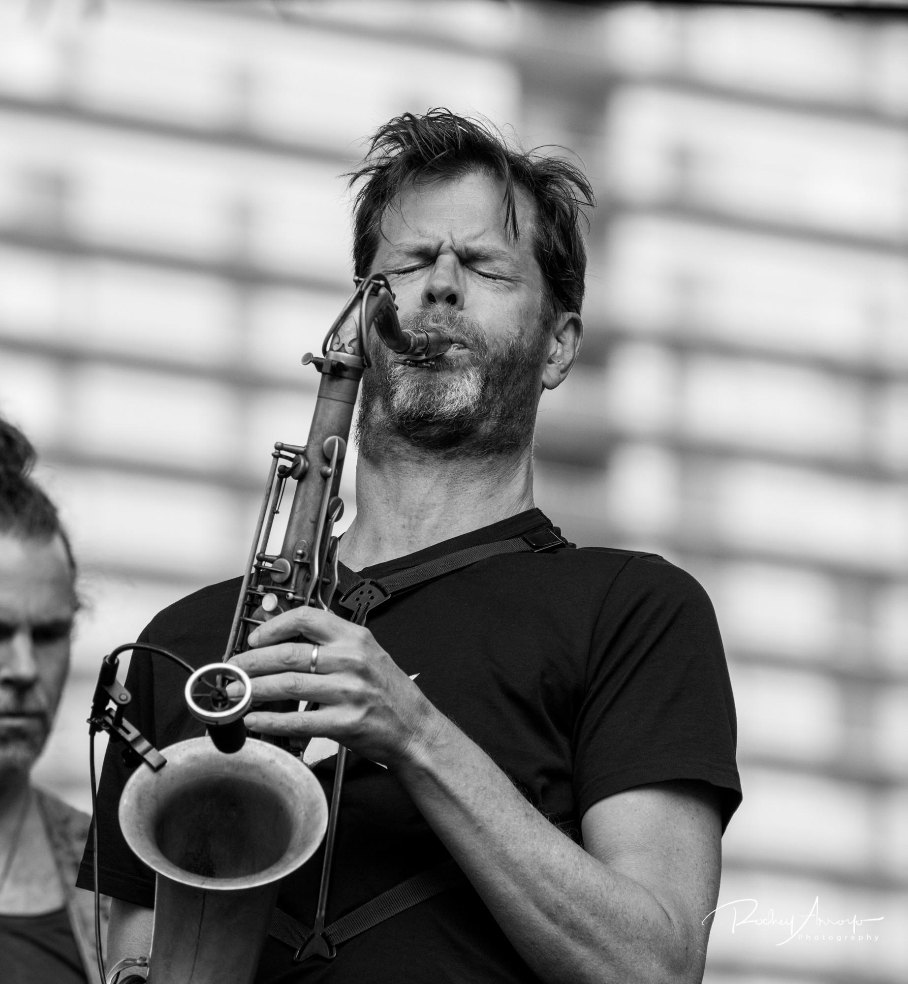 Detroit Jazz Fest 2017-05302-1504440857034