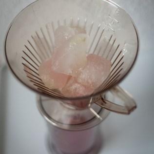 Rhabarber Saft konzentrieren Eiswürfel aus Rhabarbersaft