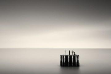 Lost-At-Sea-Mark-Voce