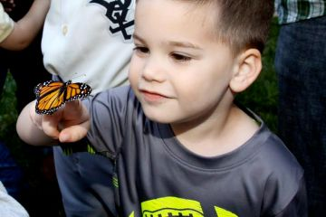 kid with butterfly