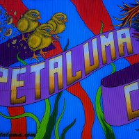 Video of the Making of the #Petaluma Mural by Maxfield Bala