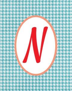 Blue Monogram N