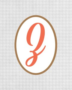 Grey Monogram Z