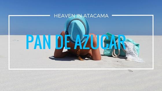 Pan de Azúcar. White- sand heaven in the middle of Atacama.