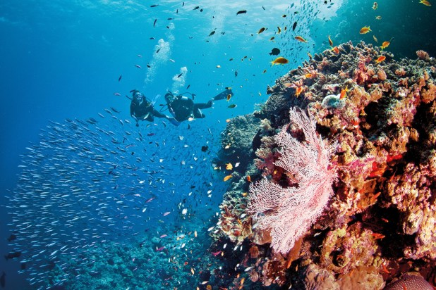 liveaboard-diving-the-great-barrier-reef Top 10 Places to Visit Next Year!