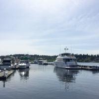 Kirkland, Washington a Fabulous Family Destination