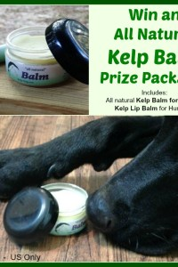 Kelp Balm for Dogs Giveaway