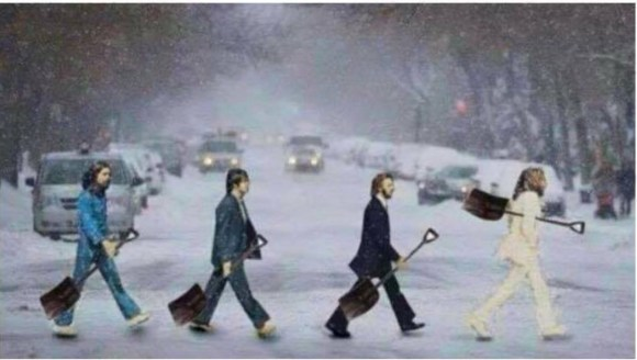 Snow Beatles