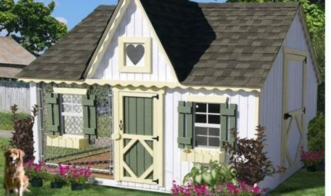 Dog House 8