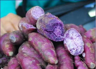 purple-potato