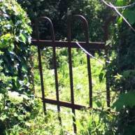 metal gate in hedge sunlit narrow lane illustrating an article about creative wriitng tips