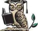 Cartoon-Owl