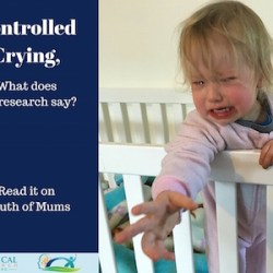 Controlled Crying Image