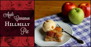 Apple Cinnamon Hillbilly Pie
