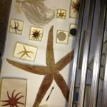 Hidden treasures in cabinets