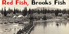 Brooks Fish