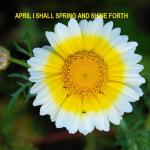 Prayer Points For April 2012