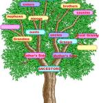 December 2012 Power Must Change Hands (PMCH) Programme – Deliverance of the Family Tree (Part 2)