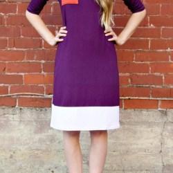 Purple Colorblock dress