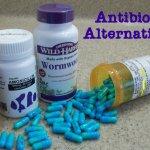 Antibiotic Alterntatives - Herbs, Foods, Teas, Oils, Fish Antibiotics