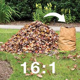 5402-leaf-reduction