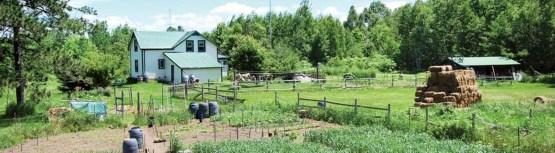 homesteading-benefits