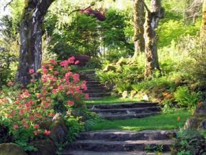 rocky-trail-steps-400px