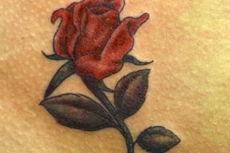 coloured rose tattoo little tattoos