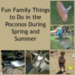 Fun Family Things to Do in the Poconos This Spring and Summer