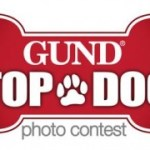 Enter Your Dog in the GUND Top Dog Contest