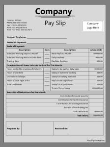 Pay Slip Form