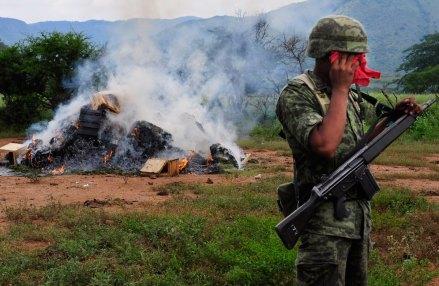 La destrucción de un plantío de mariguana en Jalisco. Foto: Rafael del Río