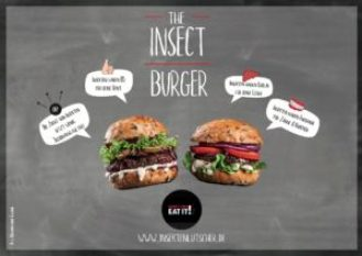 insekten burger
