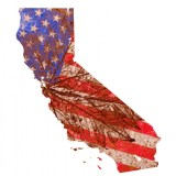 California Should Be The Economic Model For America