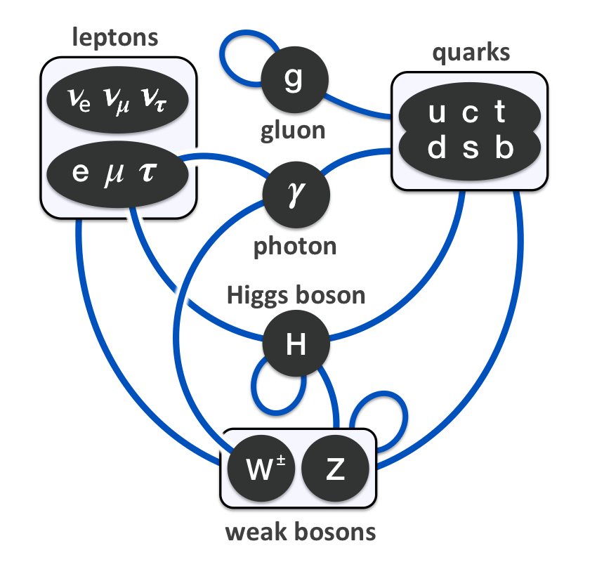 Elementary_particle_interactions_in_the_Standard_Model