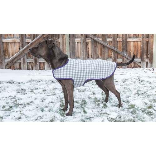 Medium Crop Of Dog Coat Pattern