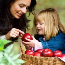 Fun things to make and do with Apples