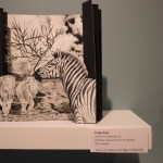 """Photo by Zonghui Li 