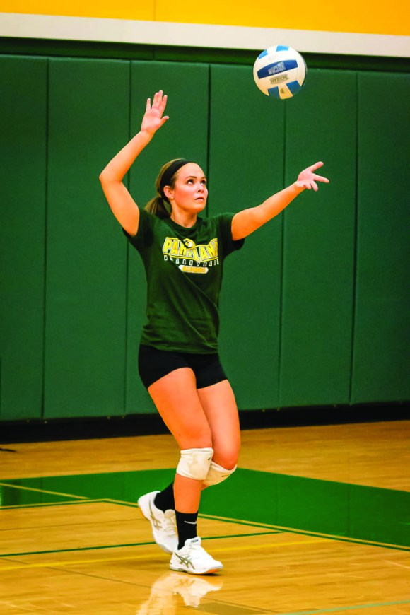 Photo by Scott Wells | The Prospectus  Parkland graduate Emma Cabutti serves up the ball during the Alumni Match on Aug. 15, 2015.  Cabutti is currently playing volleyball as a senior at Webster University in St. Louis, Missouri.
