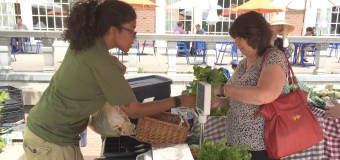Sustainable Student Farm at UIUC opens new produce stand
