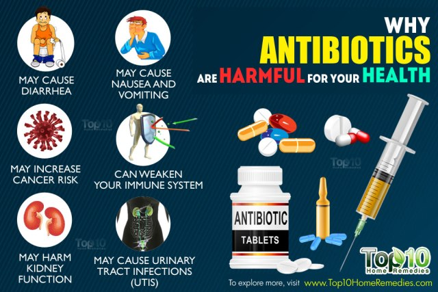 image how antibiotics are harmful