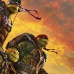 blog-tortugas