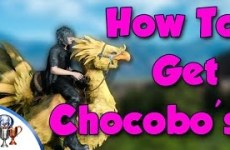 Final-Fantasy-XV-How-to-Get-and-Ride-Chocobos-Races-and-Traveling-Chocobo-Jockey