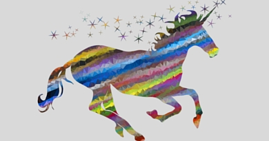 Profession : Unicorn Blogger…?