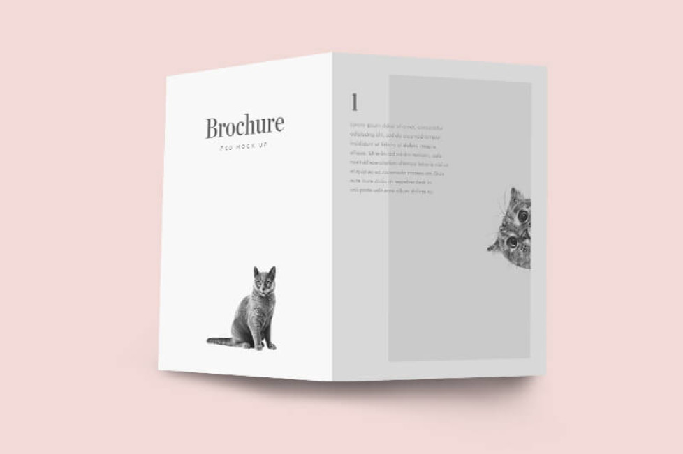 free two fold brochure template