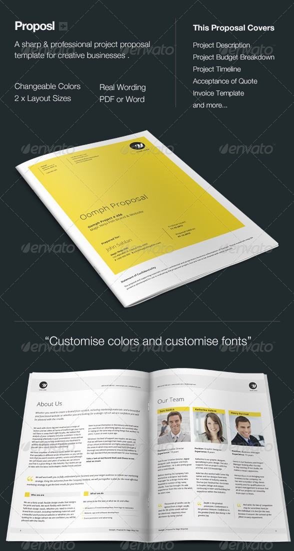 Indesign Proposal Template 122 Best Business Proposals Images On