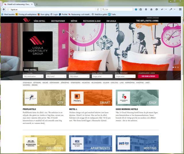 Skärmdump av hemsidan jag arbetar med, www.ligula.se