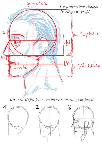 prorfil-face-tutorial