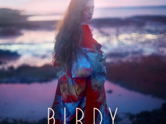 birdy_-_keeping_your_head_up