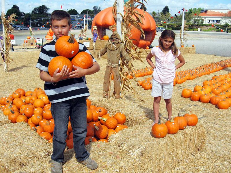 PS-PumpkinPatch-PickingAPumpkin